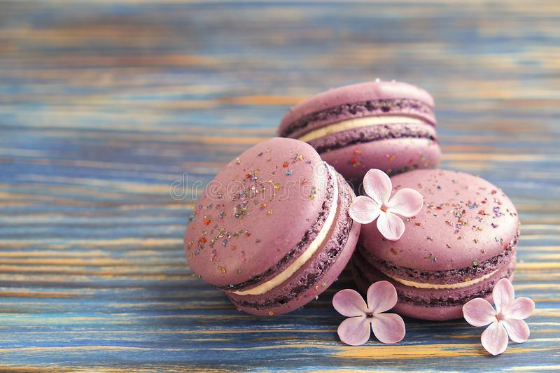 Macaron or macaroon french coockie on dark blue background with purple flowers, pastel colors. Flat lay. Food concept. royalty free stock images
