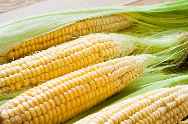 Sweet corn cobs on a wooden table royalty free stock images