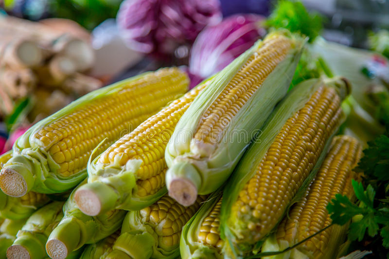 Sweet corn on the farm market in the city. Fruits and vegetables at a farmers market royalty free stock images