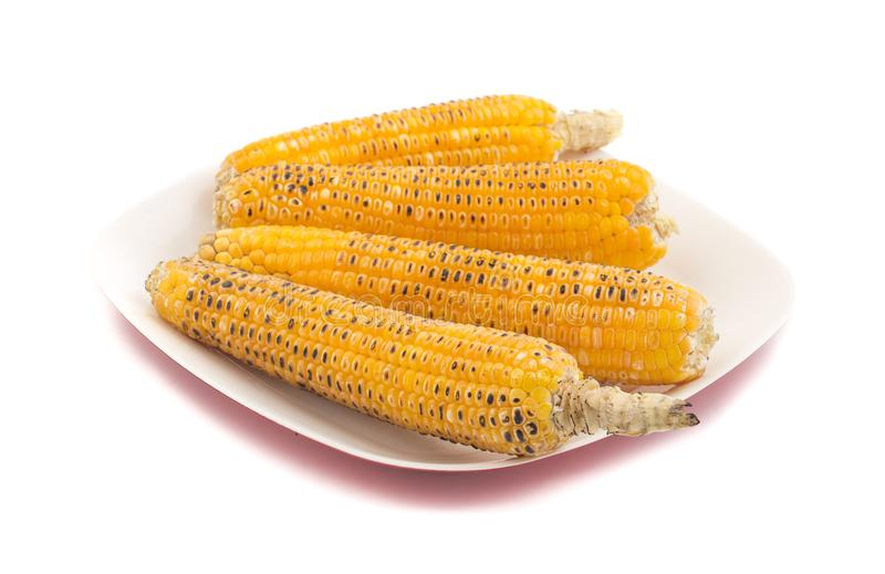 Sweet Corn. Fresh corn on cobs on wooden table, closeup, top view royalty free stock photos