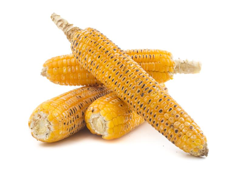 Sweet Corn. Fresh corn on cobs on wooden table, closeup, top view stock images