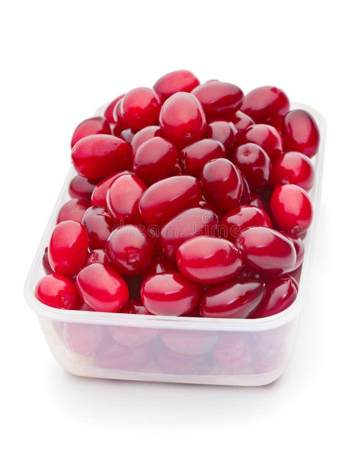 Sweet cornel berry