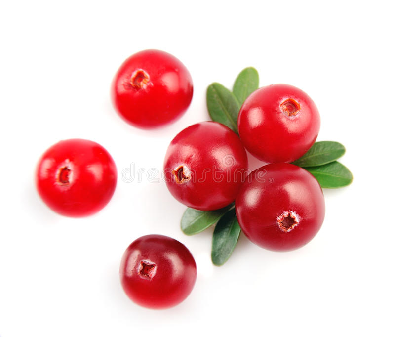 Sweet cranberries. Close up on white royalty free stock photography
