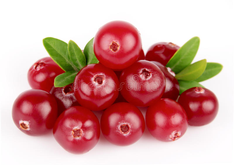 Sweet cranberries with leafs. Close up on white stock images