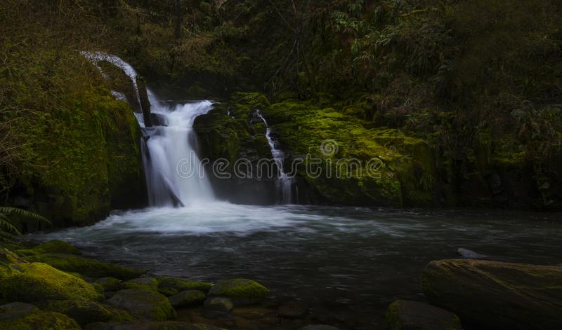 Sweet Creek Falls stock photos