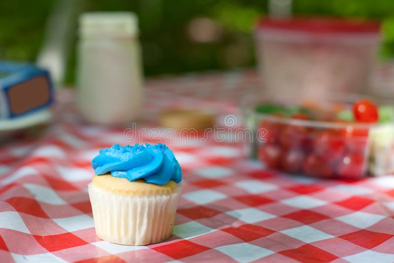Picnic table snacks royalty free stock photography