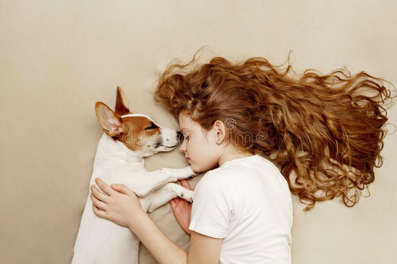 Sweet curly girl and jack russell dog is sleeping royalty free stock photo