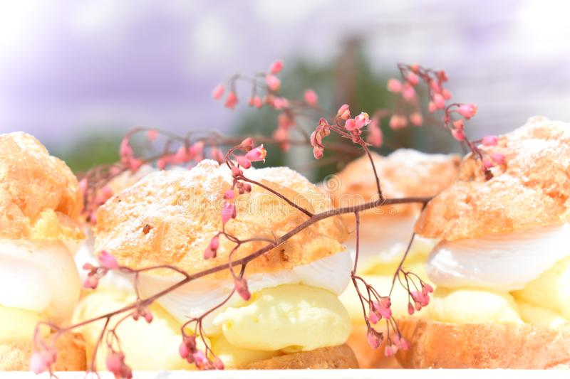 Sweet and delicious cream puffs. royalty free stock photography