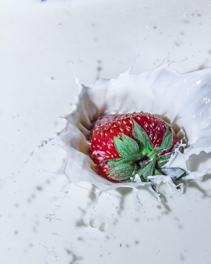 Sweet and delicious still life. Subject photo. advertising photography. strawberries and milk. red on white. frozen movement royalty free stock photos