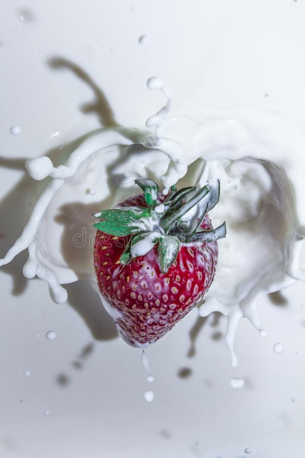 Sweet and delicious still life. Subject photo. advertising photography. strawberries and milk. red on white. frozen movement royalty free stock images