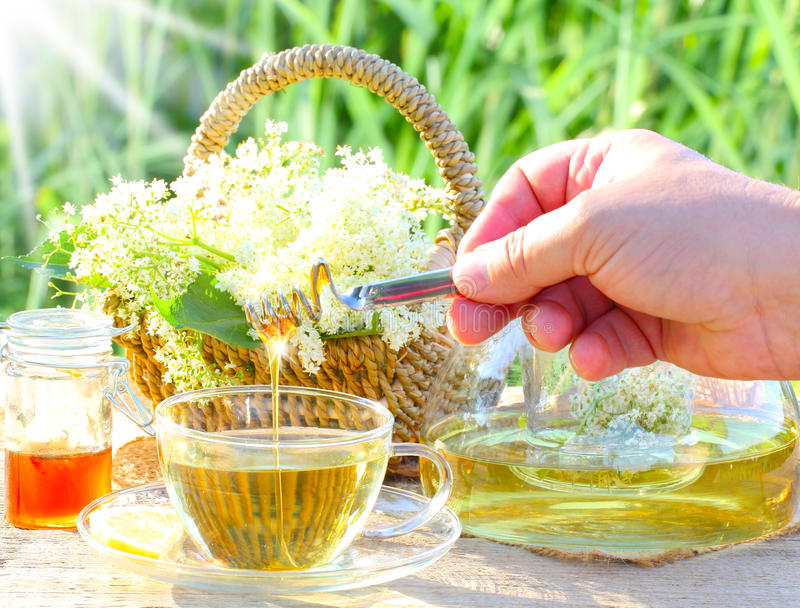 Sweet elderflower tea with honey. Breakfast table to elderflower and honey royalty free stock photos