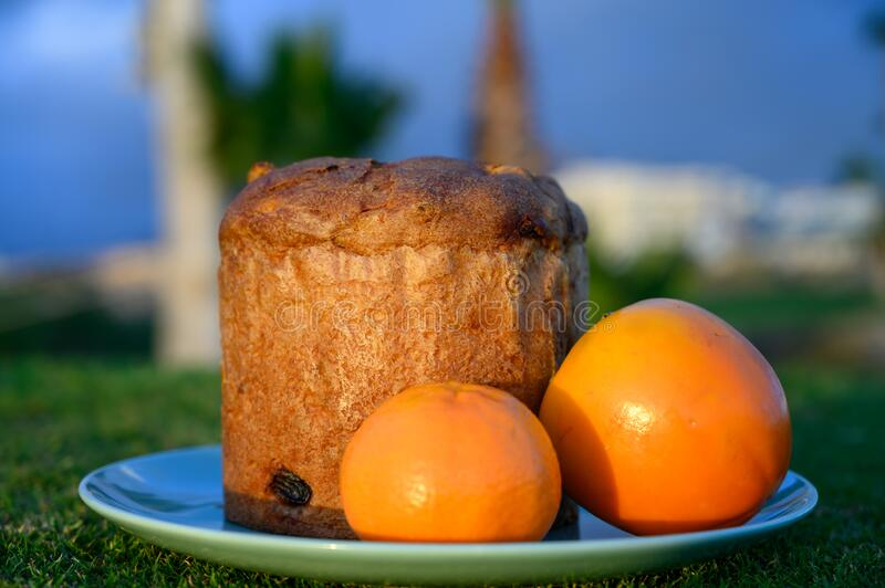 Sweet fresh baked panettone fruit cake op plate on spring green grass royalty free stock image
