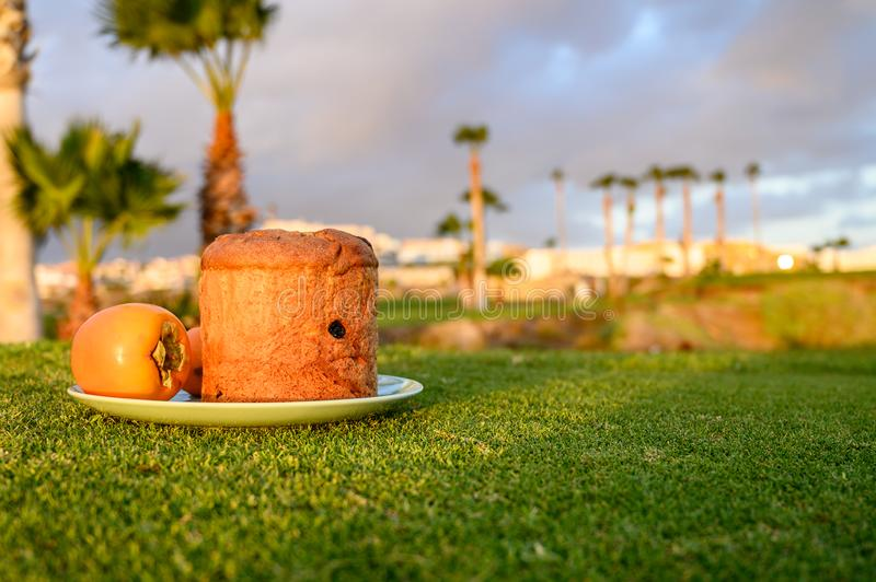 Sweet fresh baked panettone fruit cake op plate on spring green grass royalty free stock photo