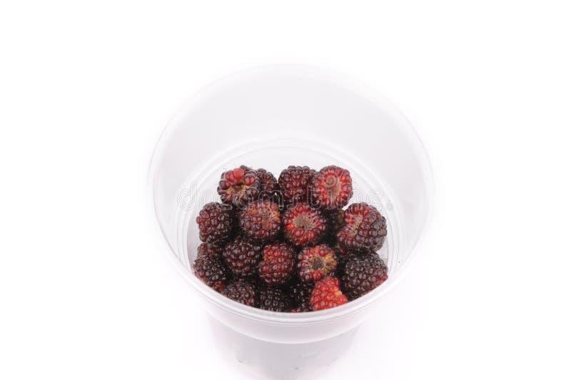Sweet fresh raspberry fruit on white