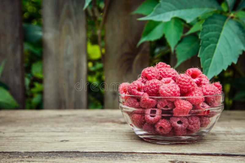 Sweet fresh raspberry in a glass dish. On a wooden rustic background with a copy space royalty free stock photo