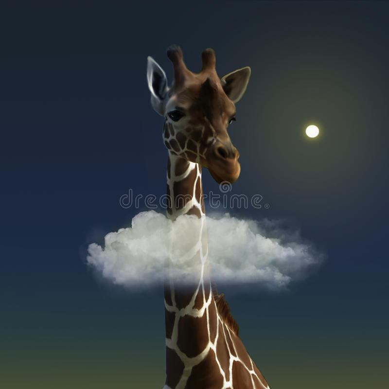 Sweet Giraffe Stock Photo