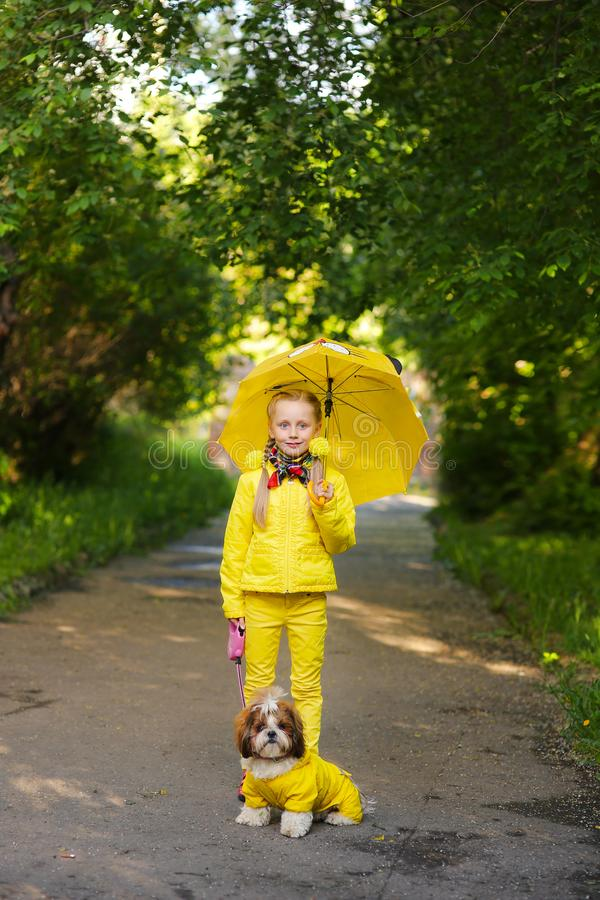 Sweet girl in the yellow jacket under an umbrella with dog walking in the pa royalty free stock photos
