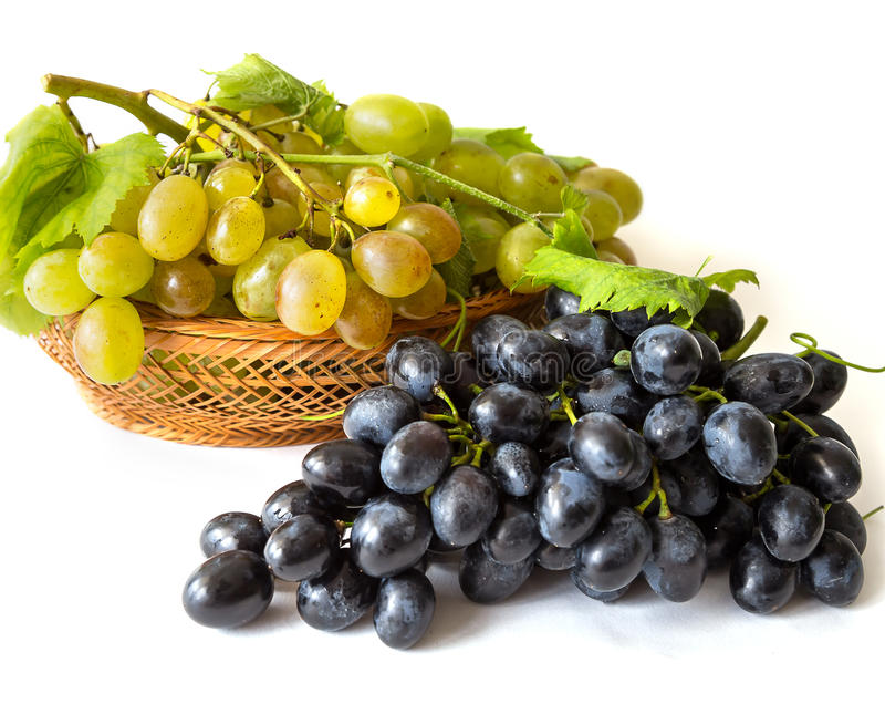 Sweet grapes. Harvest of sweet grapes yellw and black royalty free stock photo