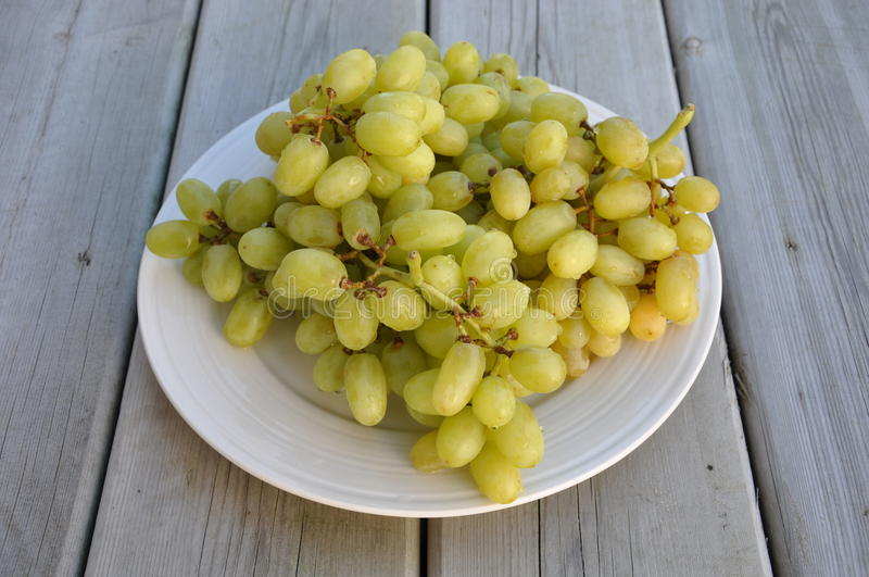 Sweet green grapes. In white plate stock photo