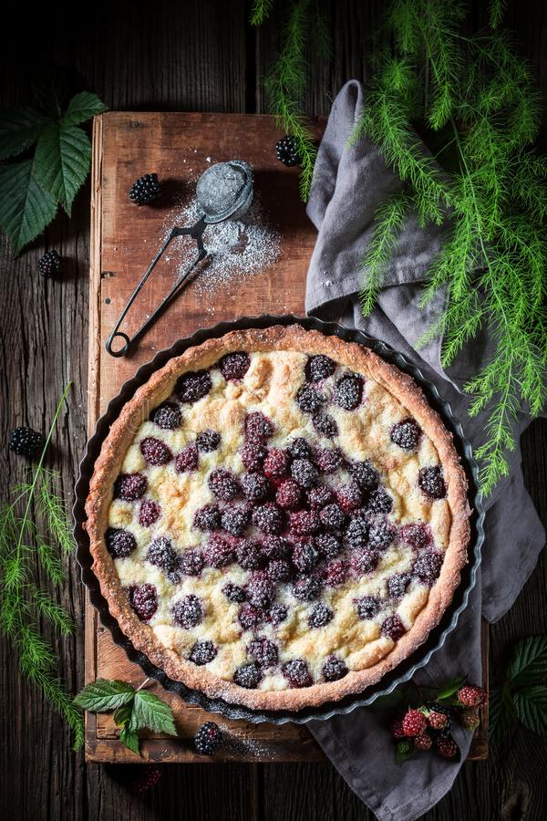 Sweet and homemade blackberry pie made of fresh fruits royalty free stock image