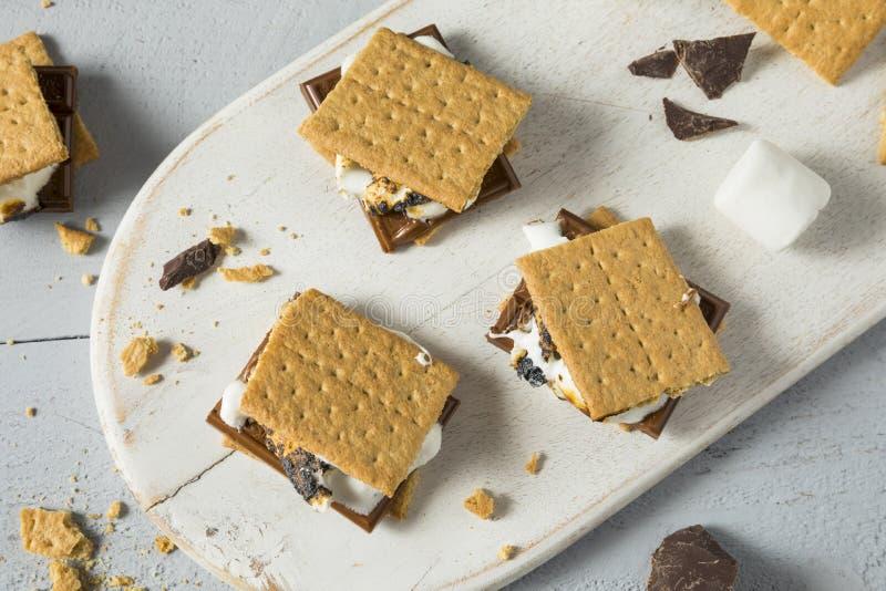 Sweet Homemade Chocolate Smores Dessert stock image