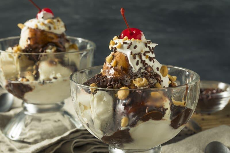 Sweet Homemade Ice Cream Sundae. With Chocolate Sauce Peantus and Cherry royalty free stock photography