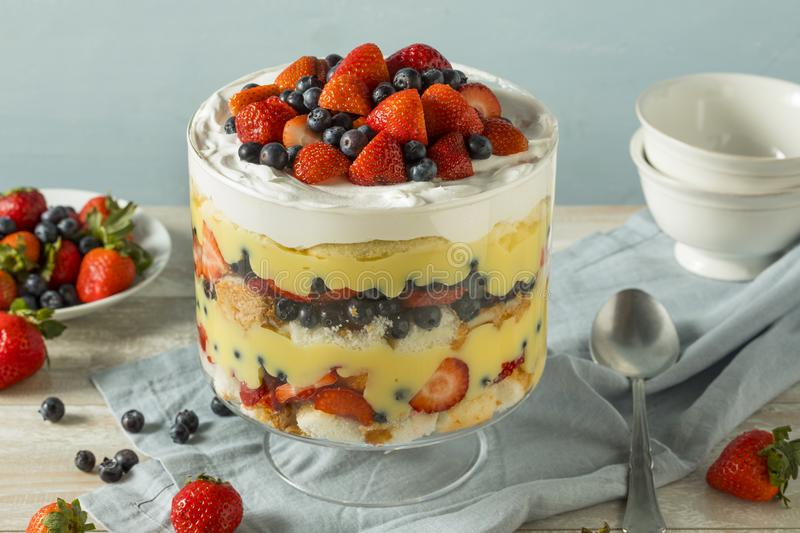 Sweet Homemade Strawberry Trifle Dessert royalty free stock photography