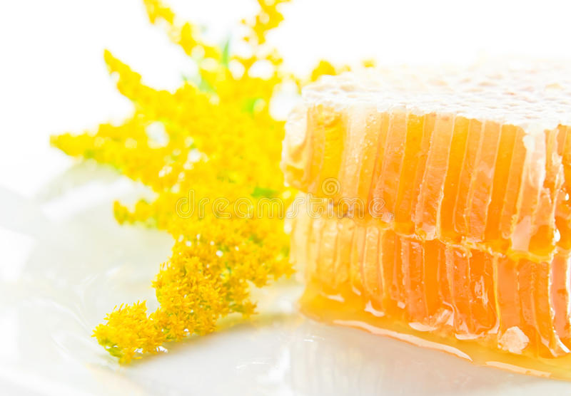 Sweet Honeycomb With Honey Royalty Free Stock Photo