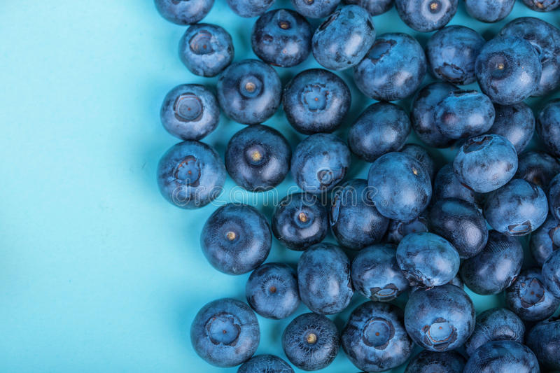 Sweet and juicy bilberries. Blueberries on a bright blue background, top view. Healthful and tasty berries, close-up. Summer fruit royalty free stock photos