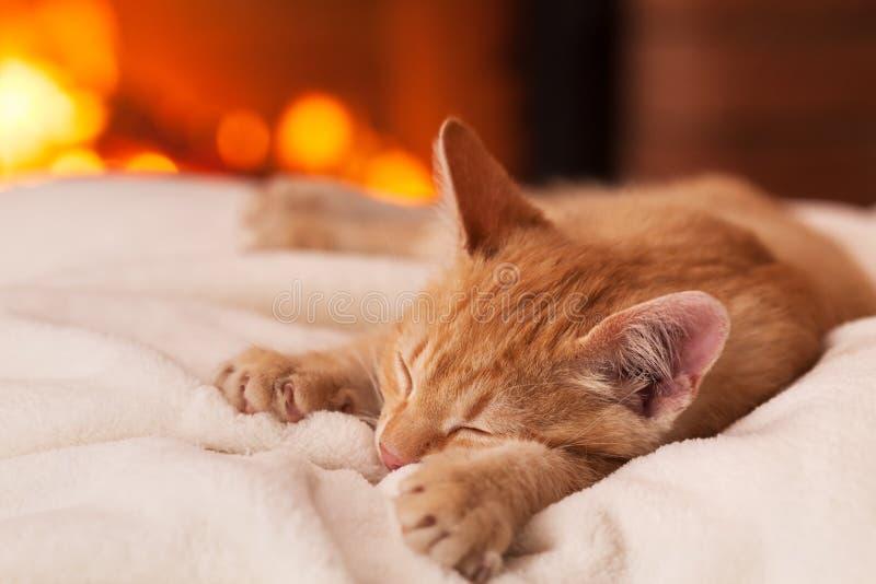 Sweet lazy evening at the fireplace - orange kitten lying on white blanket sleeping royalty free stock photography
