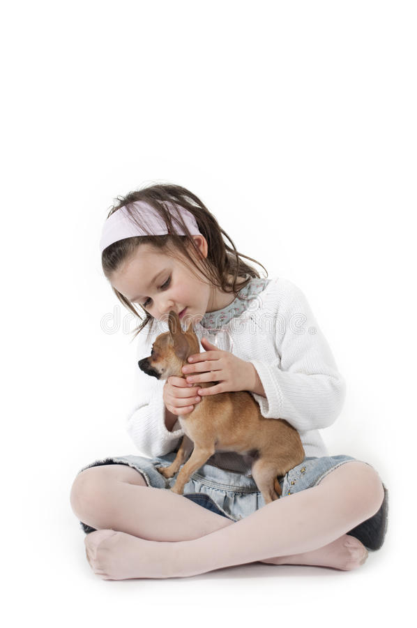 Download Sweet little dog stock image. Image of sweet, child, tenderness - 10969379