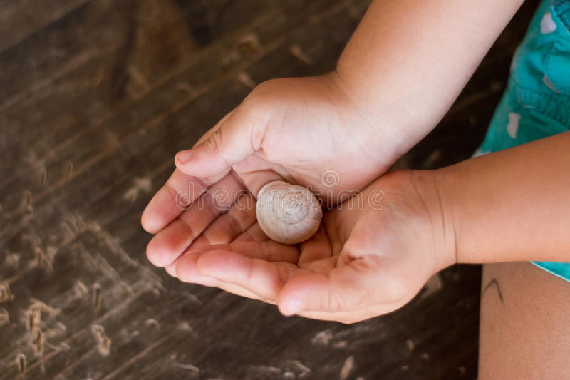 Sweet little girl holds a beautiful snail royalty free stock images