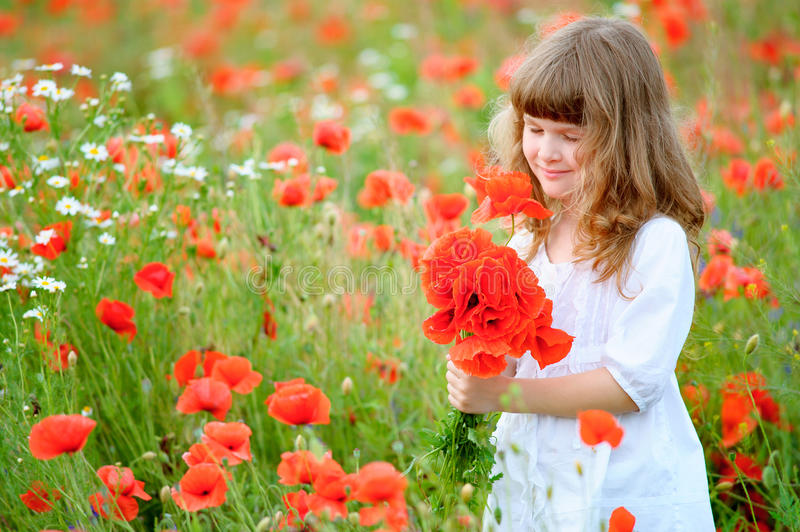 Sweet little girl pick a flowers in a wild meadow with poppies a stock photography