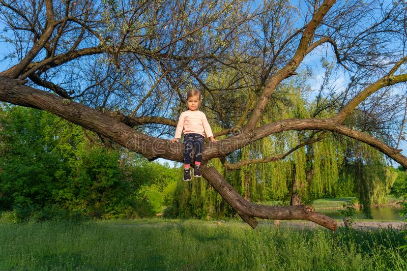 Sweet little girl sitting on tree outdoor in nature stock photography