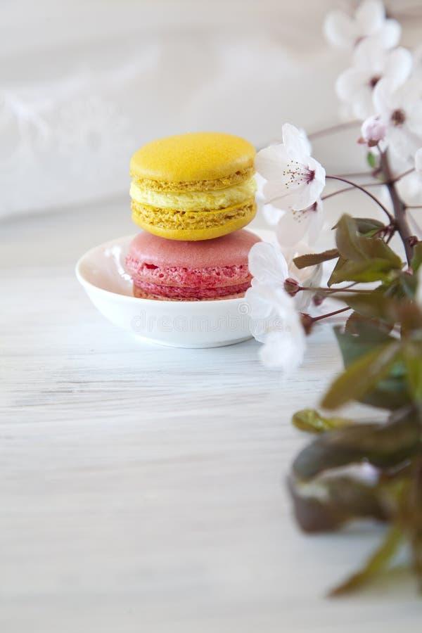 Download Sweet Macarons stock image. Image of meringue, tart, fine - 39504551
