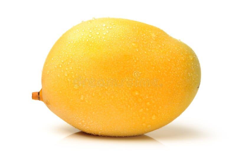 Sweet mango stock photography