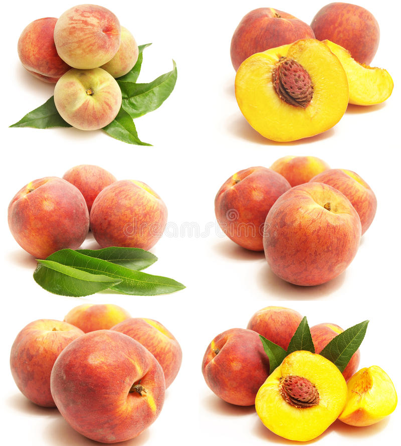 SWEET PEACH Royalty Free Stock Images