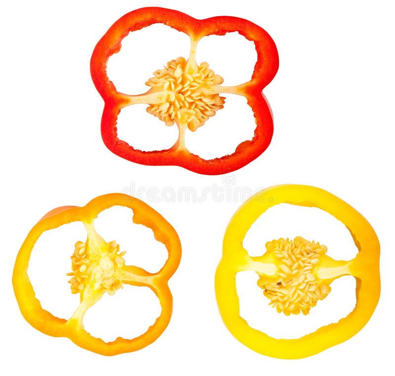 Sweet pepper slices stock photography