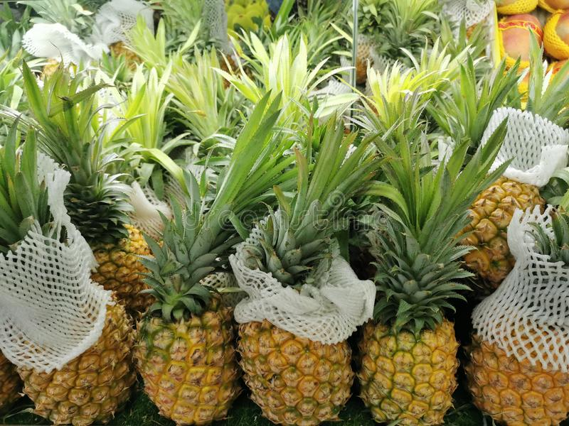 Sweet pineapple for hungry eyes. Organic food fruit of soul pineapple yummy sweet and sour tropical fruit stock images