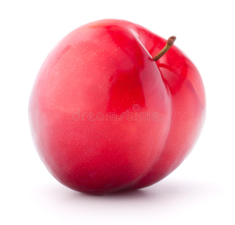 Sweet plum isolated on white background cutout royalty free stock image