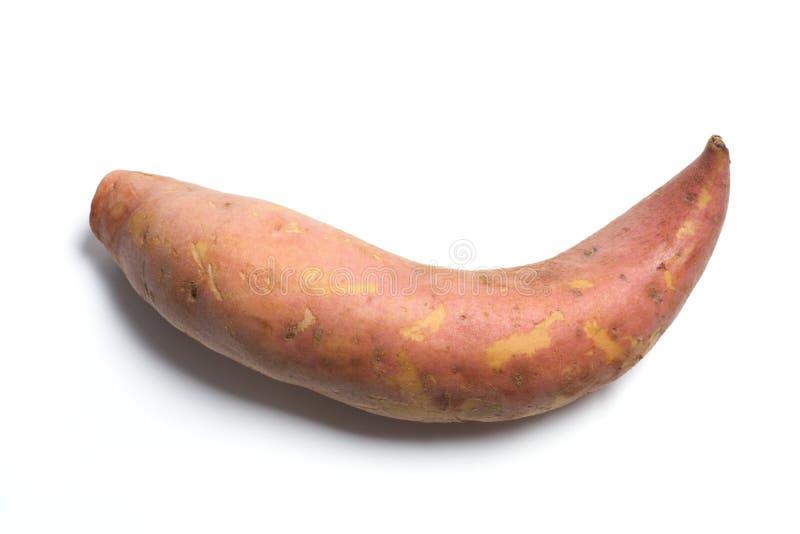 Download Sweet Potato stock photo. Image of natural, sweet, organic - 12036854
