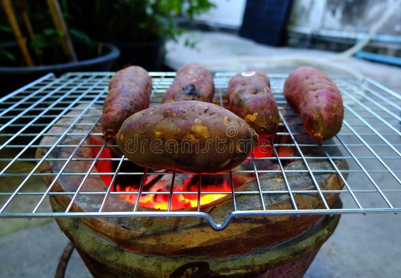 sweet potato obrazy royalty free
