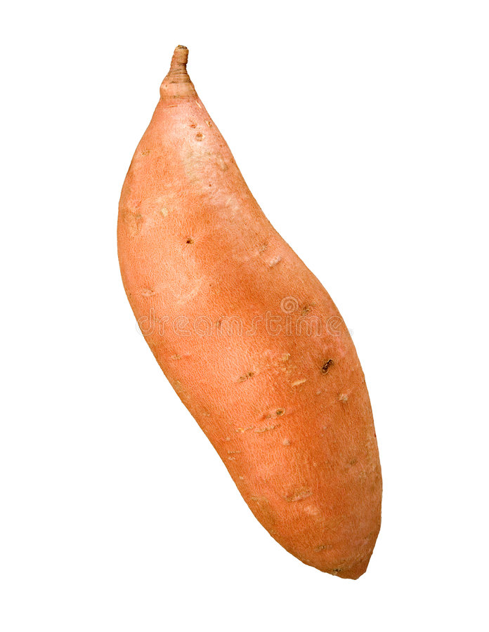Sweet Potato. Isolated on a white background. Isolation is on a transparent layer in the PNG format royalty free stock image