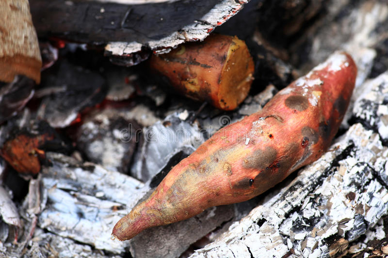 Sweet potato barbeque royalty free stock image