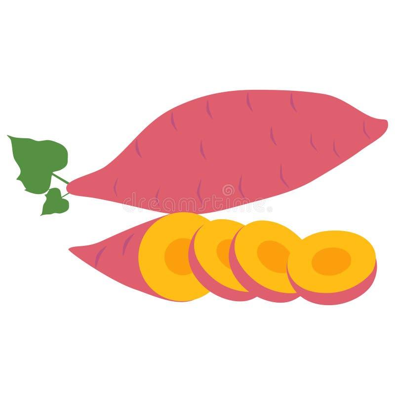Sweet potato illustration vector illustration