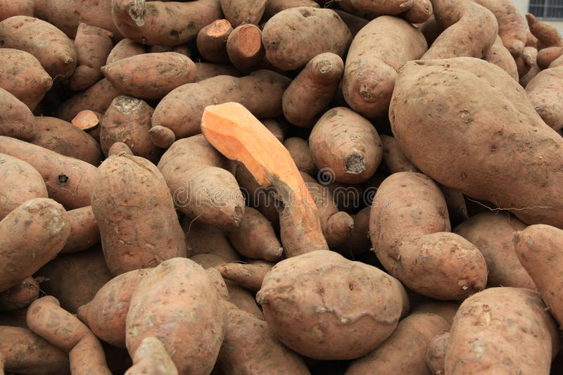 Download Sweet potatoes stock image. Image of background, vegetable - 12933695
