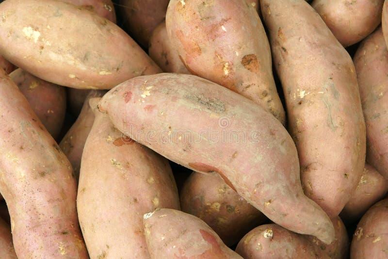 Download Sweet Potatoes Royalty Free Stock Image - Image: 21028416
