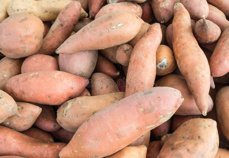 Sweet Potatoes. At the farmers market royalty free stock photos