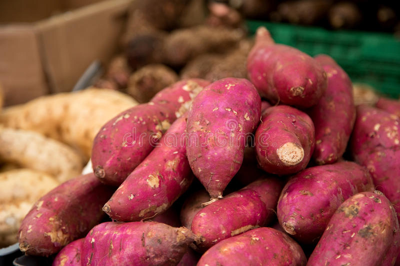 Sweet potatoes stock images