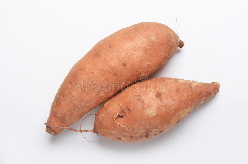 Sweet potatoes. Two sweet potatoes Ipomoea batatas shot from directly above on white background royalty free stock image